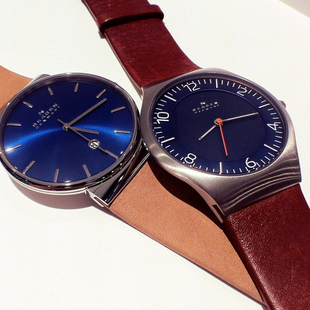 Skagen Blue & Brown